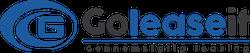 Goleaseit Logo